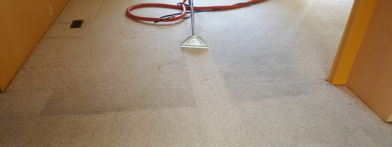 Benefits-of-Hiring-a-Carpet-Cleaning-Company.jpg